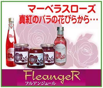 「FleangeR~(株)ヴェルデ」※東京都