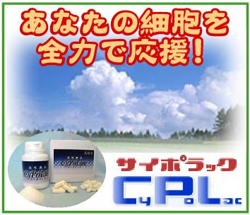 あなたの細胞を全力で応援~「(有)スクラム」※千葉県