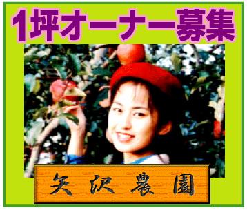 1坪オーナー募集~「矢沢農園」※長野県