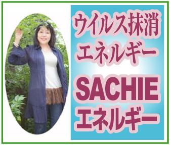 ウイルス抹消・・・~「SACHIEエネルギー」※埼玉県