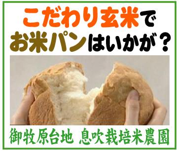 こだわり玄米でお米パン~「息吹栽培米農園」※長野県