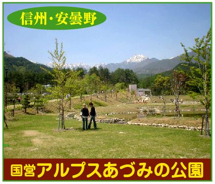 「国営アルプスあづみの公園」※長野県