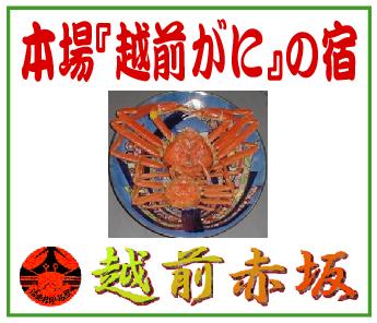 「活魚料理旅館/越前赤坂」※福井県