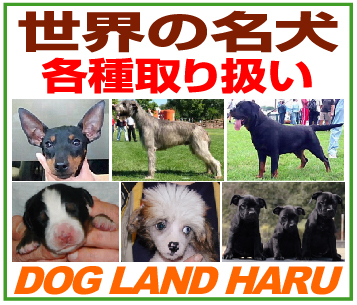 「ドッグランド ハル」※三重県
