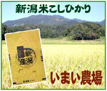 「新潟コシヒカリ/いまい農場」※新潟県