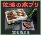 「佐渡の寒ブリ~(有)石原水産」※新潟県