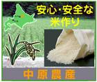北海道米~「中原農産」※北海道