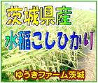 水稲こしひかり~「ゆうきファーム茨城」※茨城県