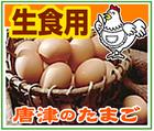 生食用・唐津のたまご~「(有)日浦養鶏場」※佐賀県