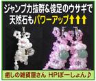 癒しの雑貨屋さん~「HPポーション」※福島県