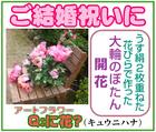 アートフラワー・本命のショップ~「Q:に花?」※和歌山県