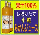 「杉レモンハウス」※和歌山県