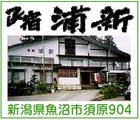 「民宿 浦 新」※新潟県