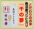 「株式会社千手」※新潟県