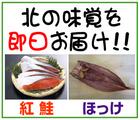 「株式会社魚勢(うおせい)」※北海道