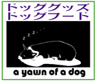 「a yawn of a dog」※長野県