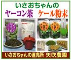 「いさおちゃんの直売所/矢吹農園」※北海道