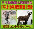 「姫路セントラルパーク」※兵庫県